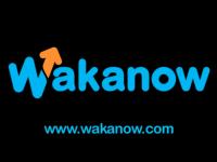 Wakanow-1000x531-1
